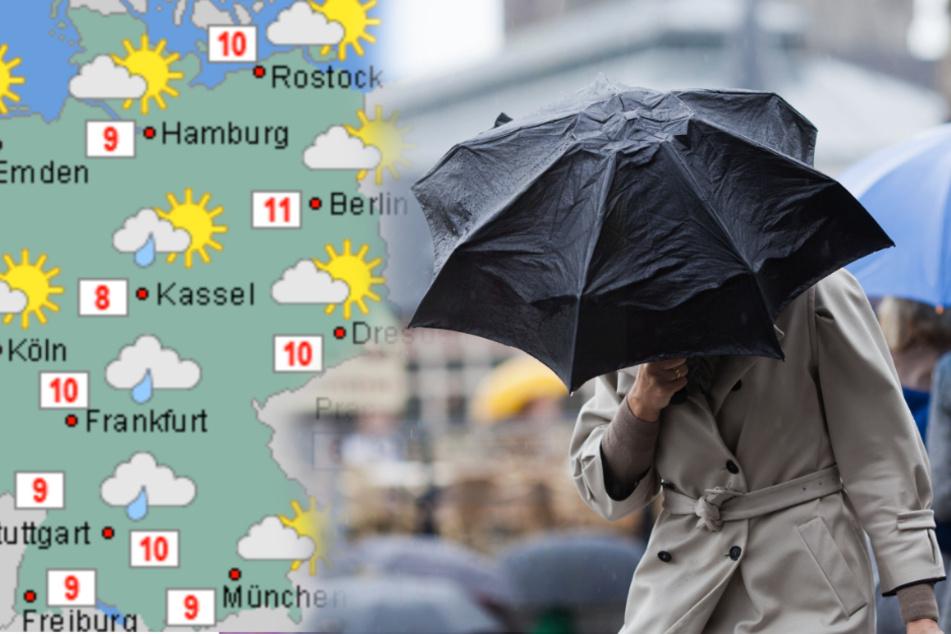 Der Schnee macht eine Pause! Es wird mild und nass in Deutschland