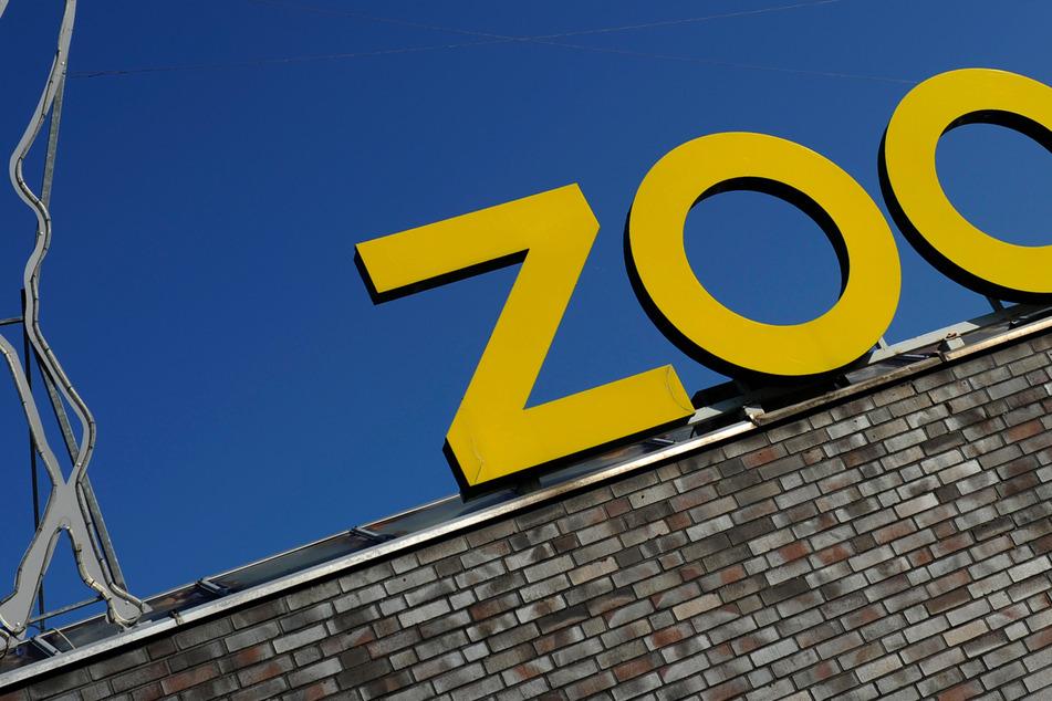 Für Hochwasser-Opfer: Kölner Zoo organisiert Freikarten-Aktion