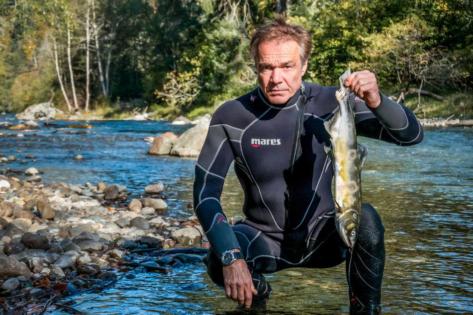 Kanada, Vancouver Island: Schauspieler Hannes Jaenicke (60) hält am Campbell River einen Lachs in die Höhe.