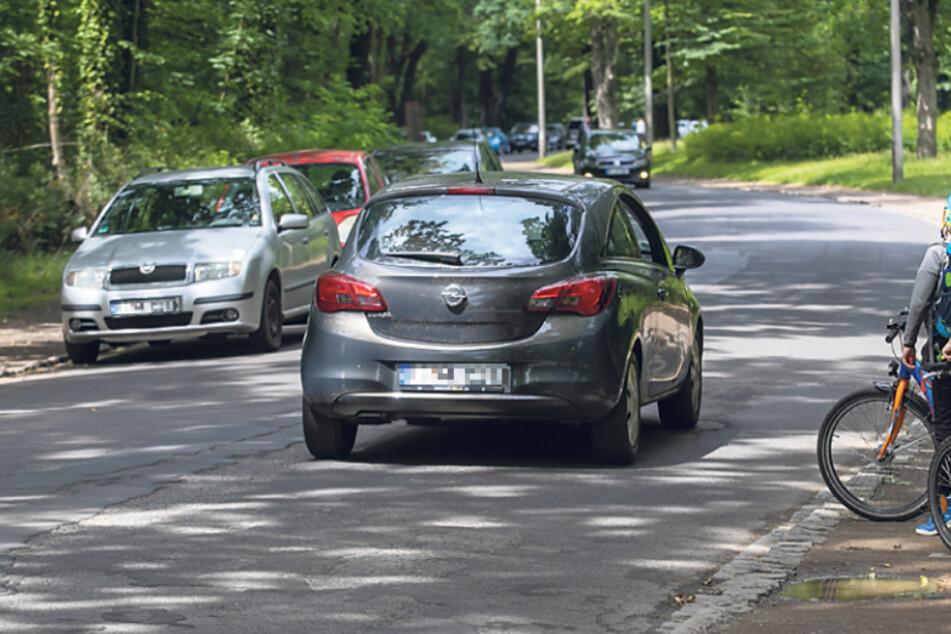 Verbot für Autofahrer? Großer Streit um Waldpark