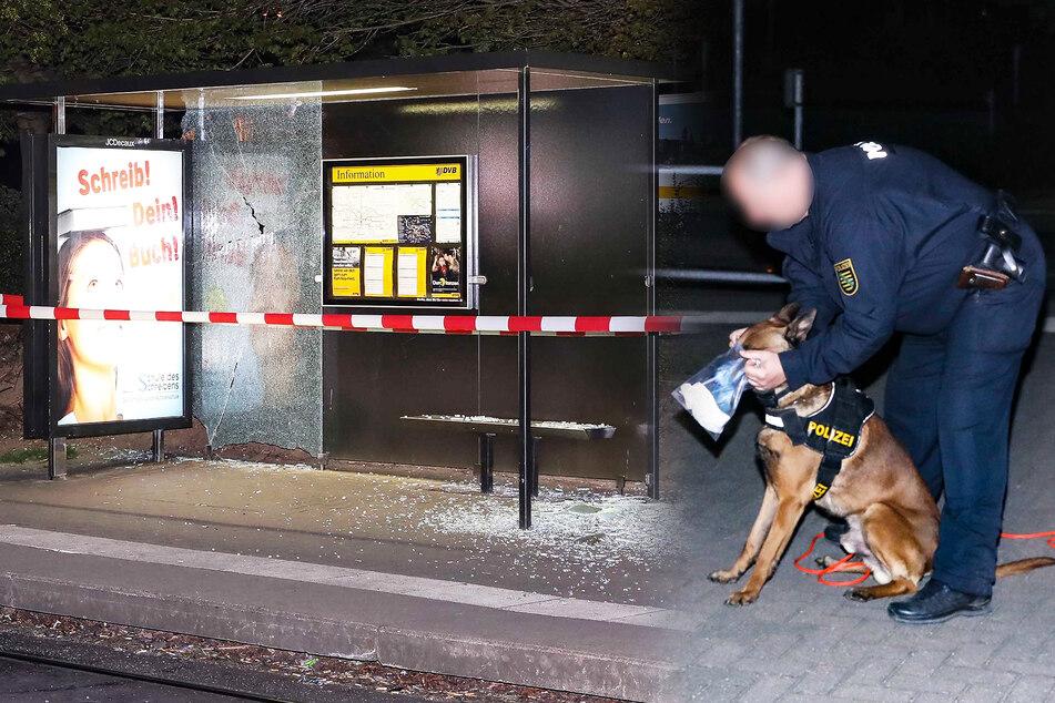 Unbekannter schießt in Dresden auf Haltestelle, doch weit kommt er nicht
