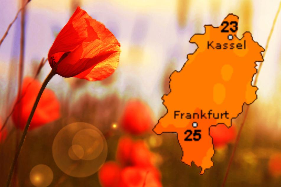 Auch der Dienst Wetteronline.de sagt traumhaftes Spätsommer-Wetter für den Sonntag in Hessen voraus.