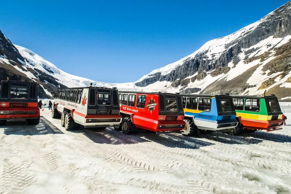 Unglück mit Touristen-Bus: Drei Menschen tot, 24 verletzt