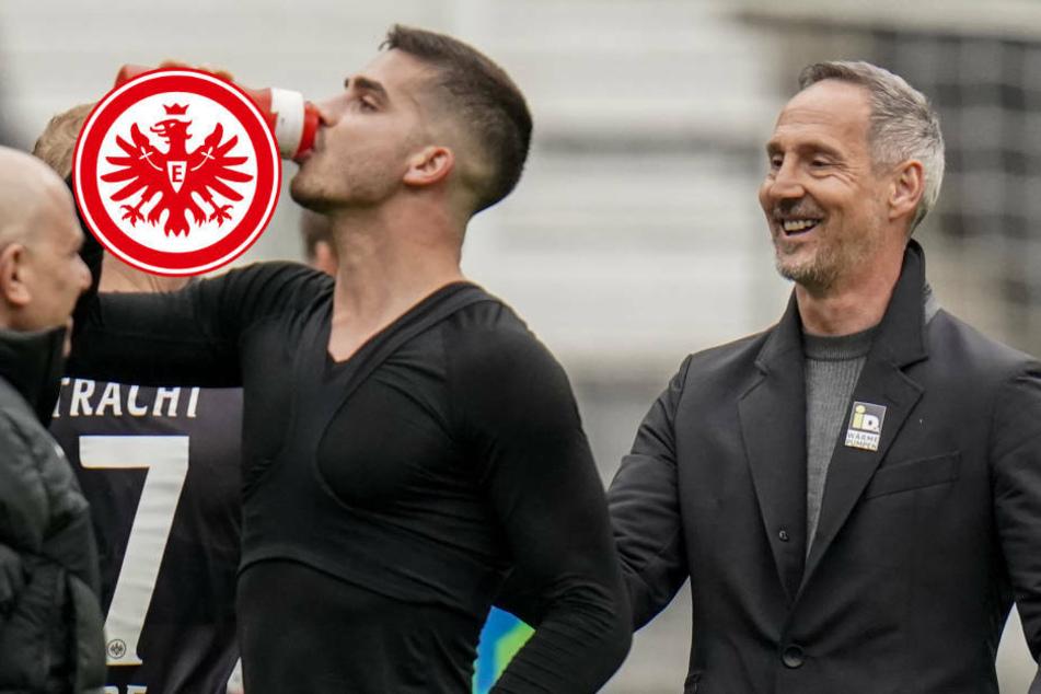 """""""Absoluter Husarenritt"""": Eintracht Frankfurt nach Sieg im Spektakel obenauf"""