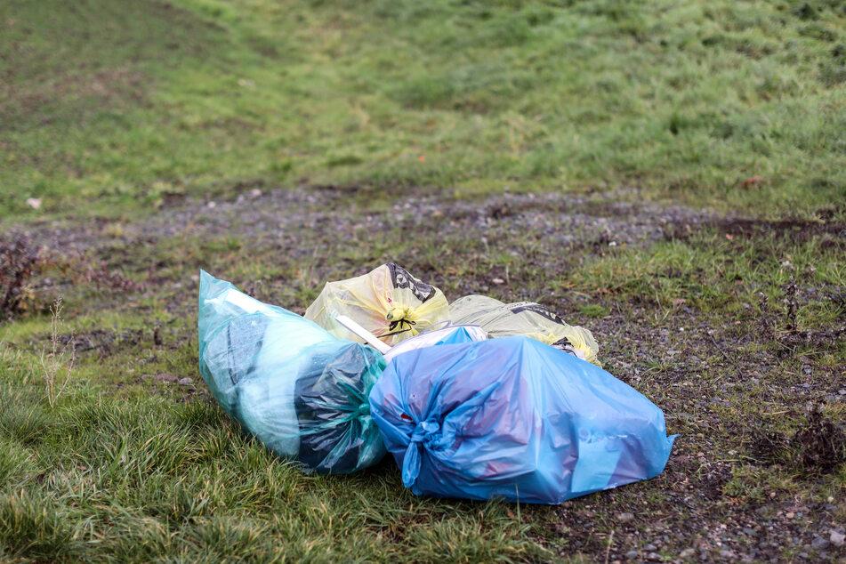 Mehrere Mülltüten liegen abseits einer Straße auf einer Wiese in Eilenburg. Die illegale Müllentsorgung wird für sächsische Kommunen immer kostspieliger.