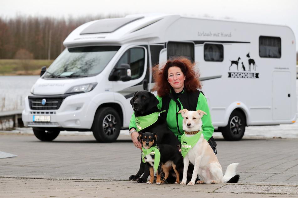 Unternehmerin Monika Eckstein-Scheffler (53) mit ihren Hunden Forrest, Louis und Valley (von groß nach klein).