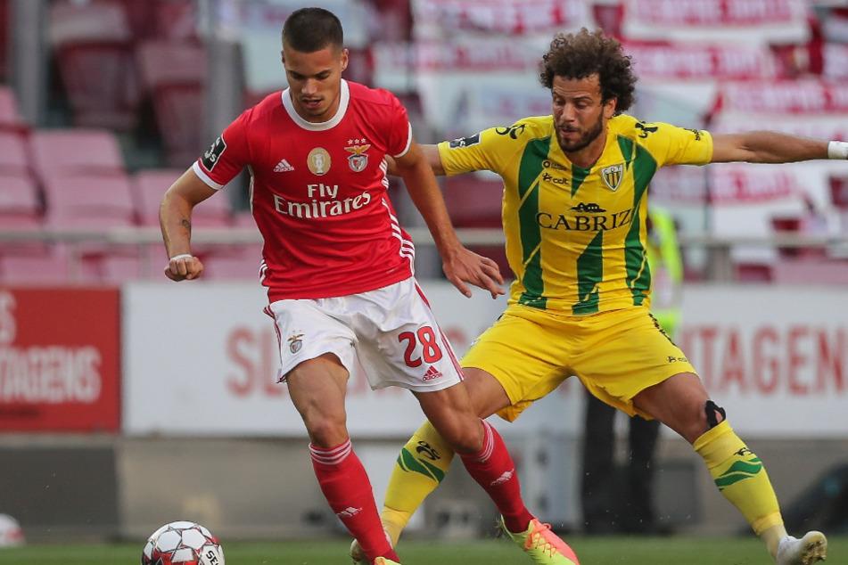 Julian Weigl (l.) will Benfica Lissabon nach einem Jahr wieder verlassen.