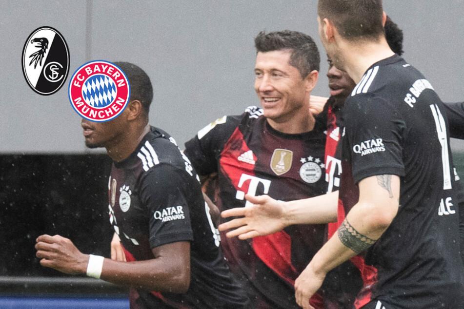 Rekord-Tor für Lewandowski, aber kein Dreier! SC Freiburg trotzt FC Bayern Remis ab