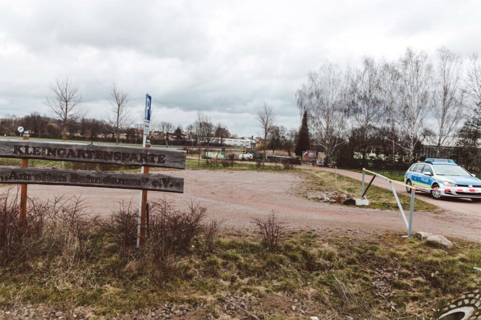 Der Fundort befindet sich in einer Gartenanlage nahe der S31...