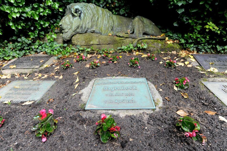 Vor sieben Jahren wurde die lebensgroße Statue des Löwens gestohlen.