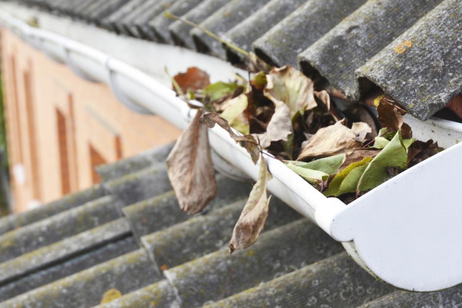 Dramatische Szenen auf Dach: Rentner (80) will Regenrinne säubern, gerät in Lebensgefahr