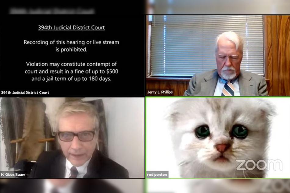 Der US-amerikanische Anwalt Rod Ponton (unten rechts) nahm mit einem Katzen-Filter an einem virtuellen Gerichtsverfahrens teil.