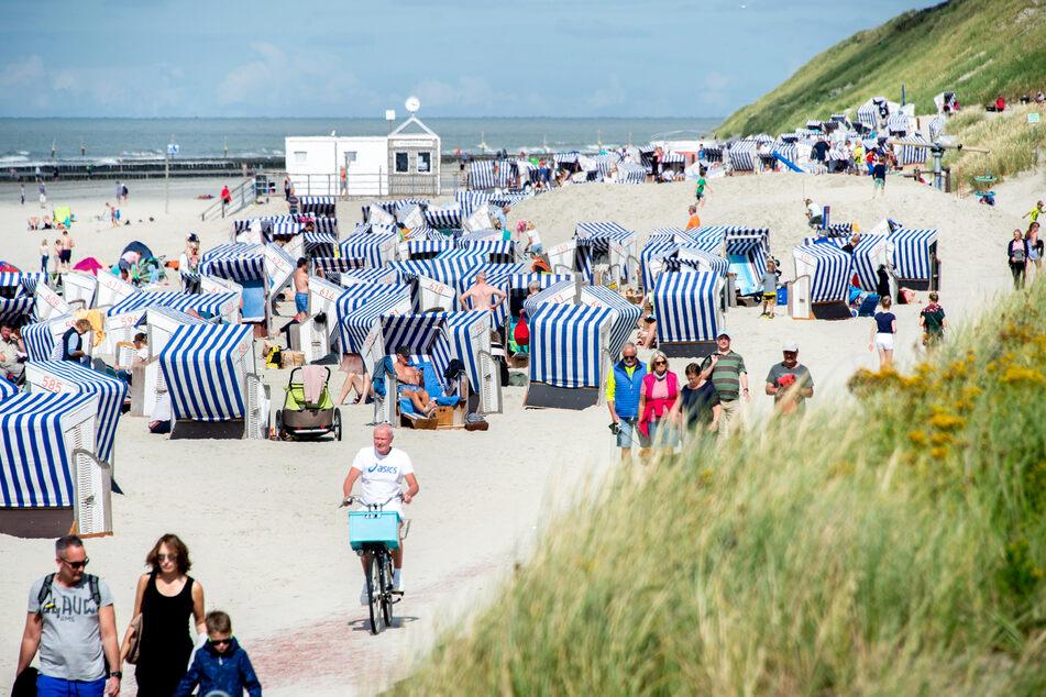 Auf beliebter Nordsee-Insel: Touristen finden Schädel im Sand