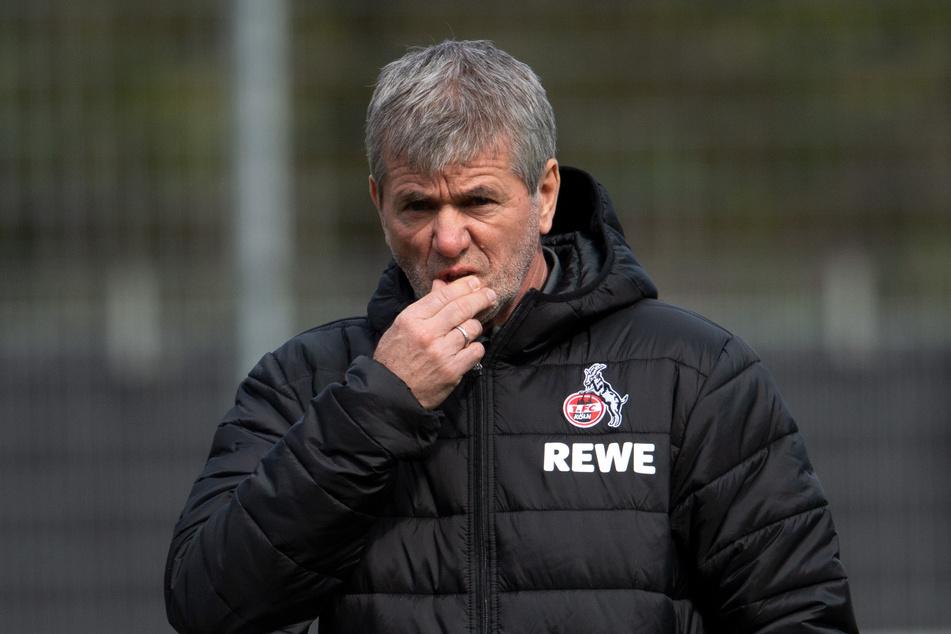 Kölns Neu-Trainer Friedhelm Funkel (67) hat sich nicht von Angeboten aus der Türkei und China ins Ausland locken lassen.
