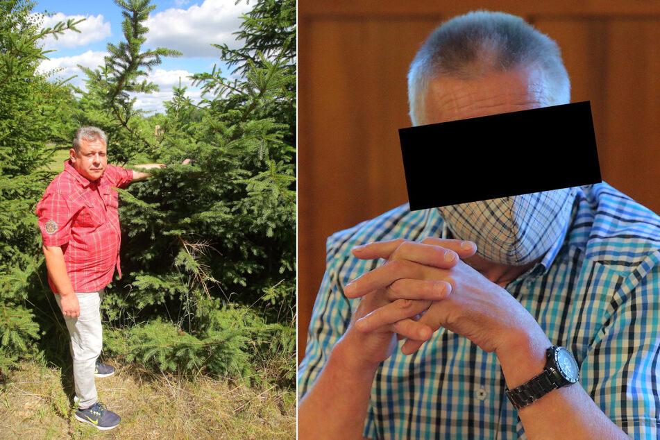 Christbaum-Raub mit Fuchsschwanz: Schöne Bescherung für Rentner vor Gericht