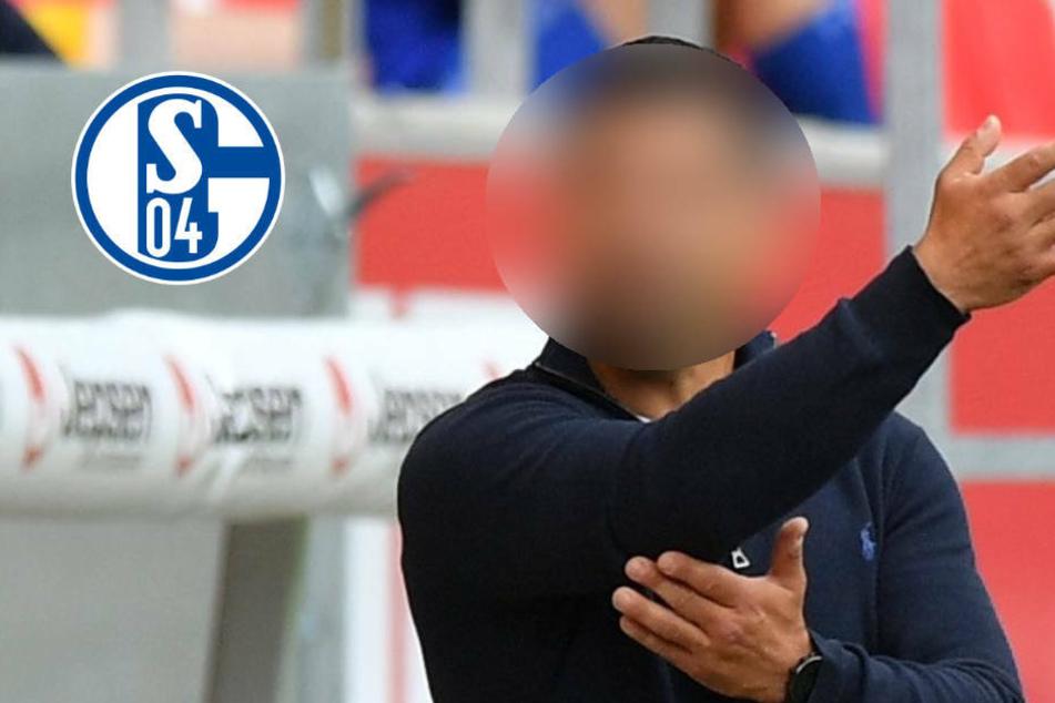 Ex-Darmstädter soll den FC Schalke 04 vorm Abstieg retten