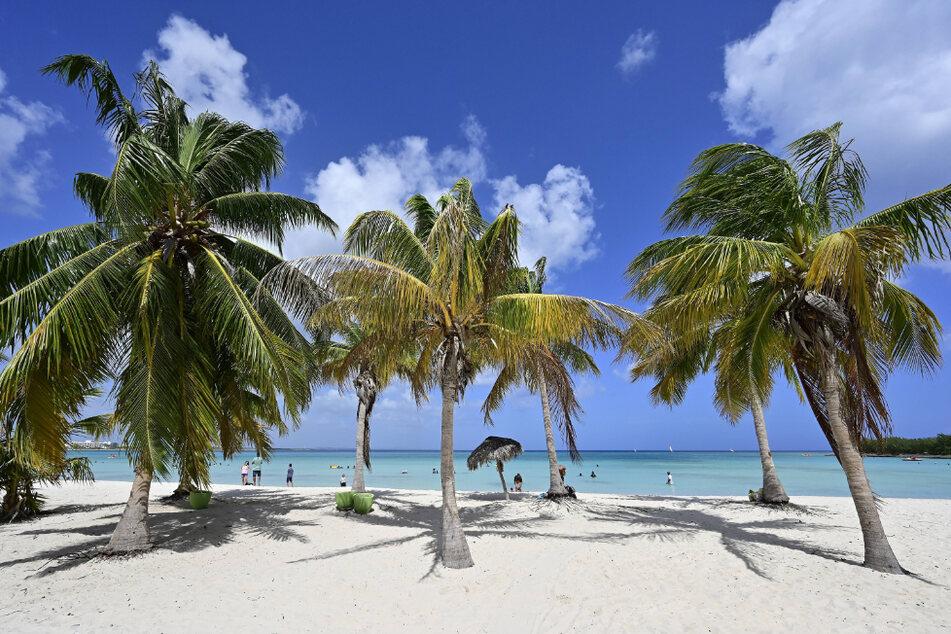 Solch eine Strandidylle soll Uerlings in Kuba genossen haben. (Symbolbild)