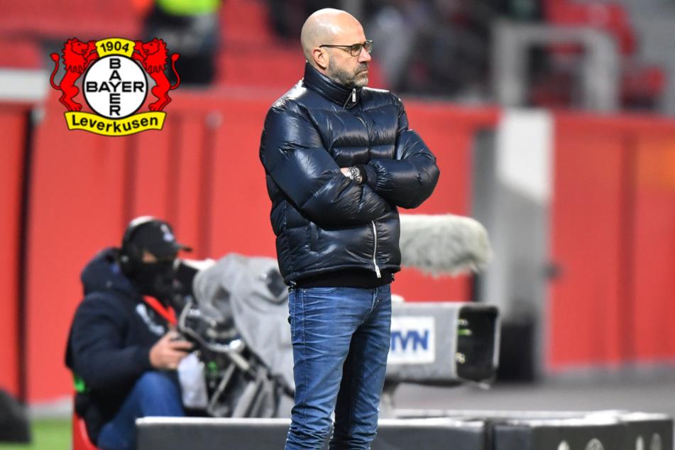 Drei kurzfristige Ausfälle: Bayer mit Mini-Aufgebot gegen Hertha