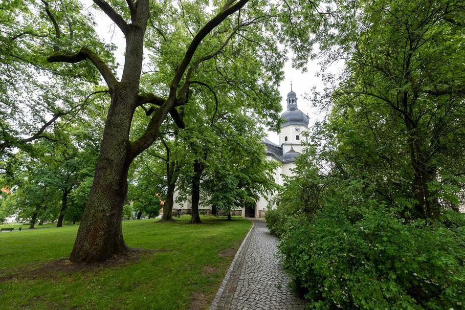 Die Touren führen auch am Park hinter der Lutherkirche vorbei.