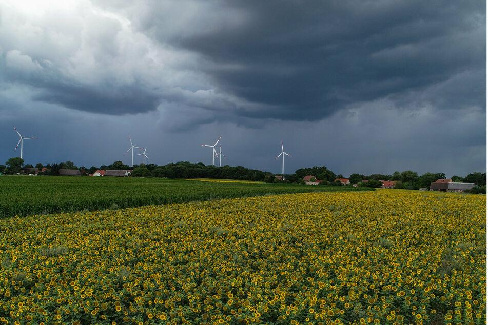 In Brandenburg ziehen am Sonntagabend dunkle Wolken auf.