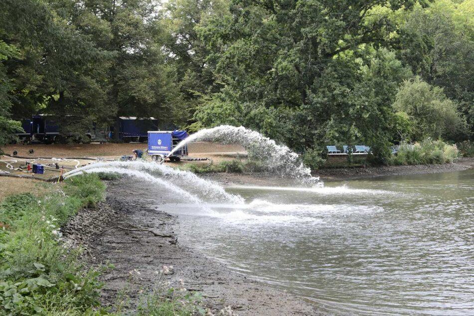 Die Arbeiten am Inselteich sind beendet, es kann wieder Wasser eingelassen werden.