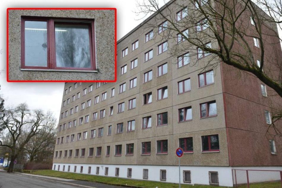 Vermummte Täter werfen Steine auf Asylheim