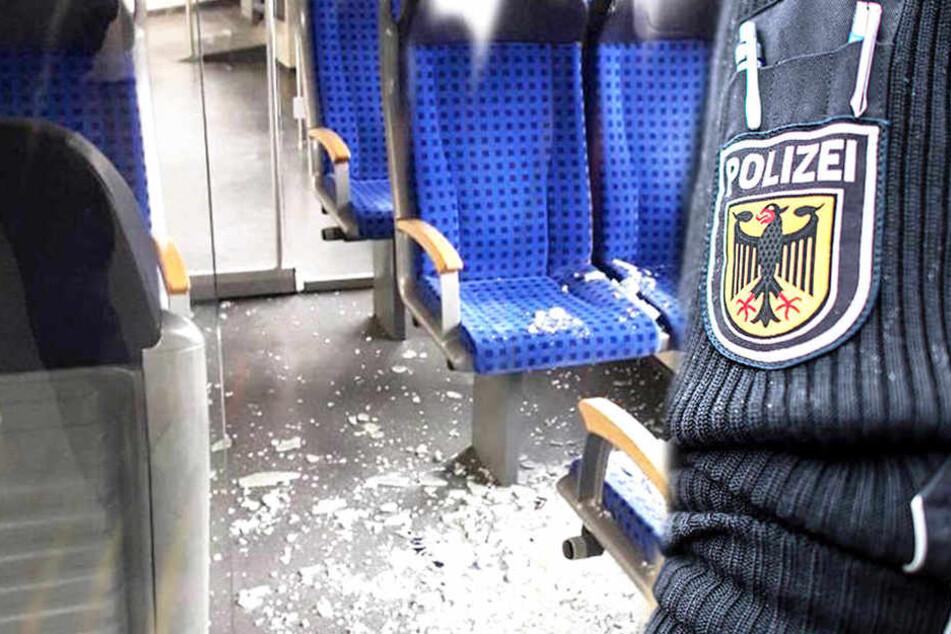 In einem S-Bahn-Zug randalierten am 15. Februar mehrere Männer.
