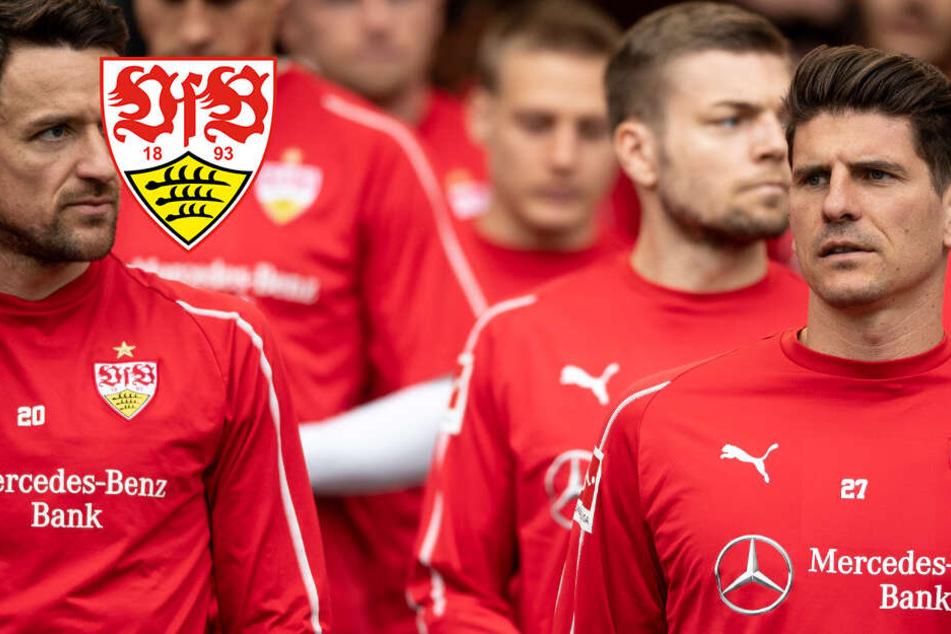 Vor Duell gegen Hoffenheim: VfB Stuttgart muss im Abstiegskampf liefern