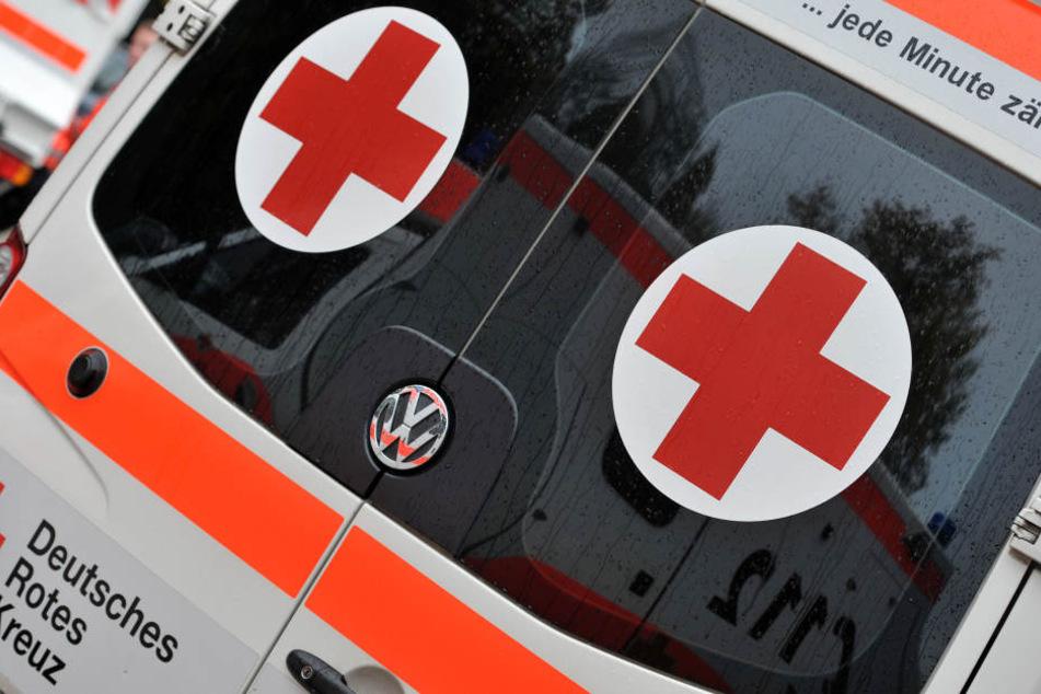 Bei einem Verkehrsunfall ist am Freitagmittag in Halle/Saale eine Fahrradfahrerin ums Leben gekommen.