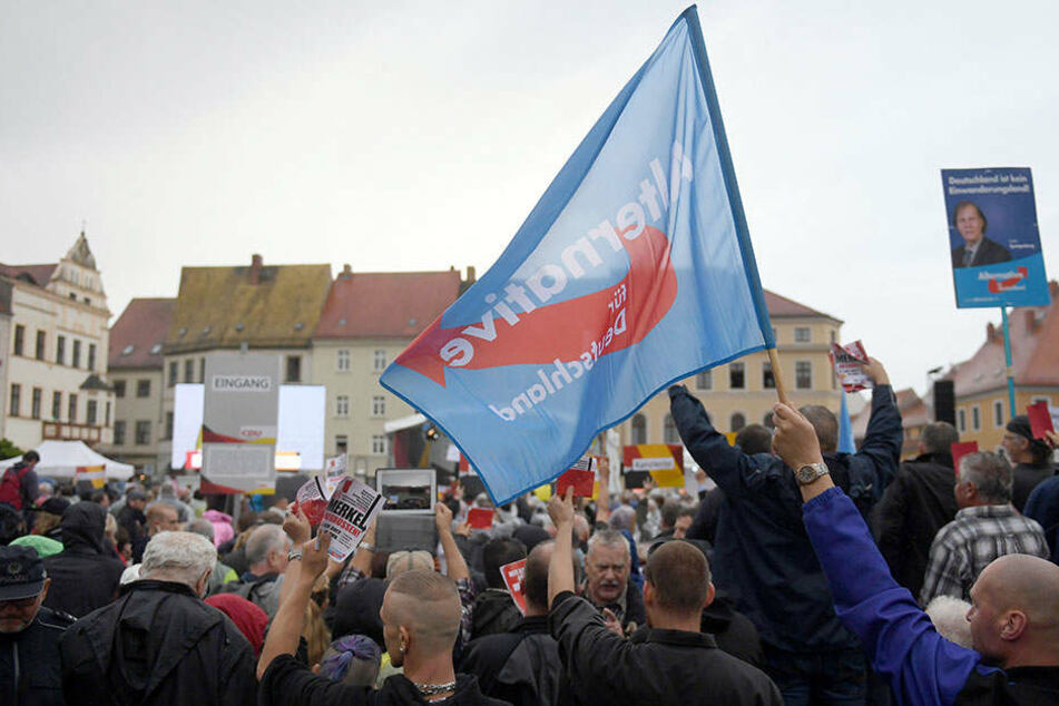 Bei einem Wahlkampfauftritt von Angela Merkel in Torgau waren auch zahlreiche AfD-Anhänger anwesend.
