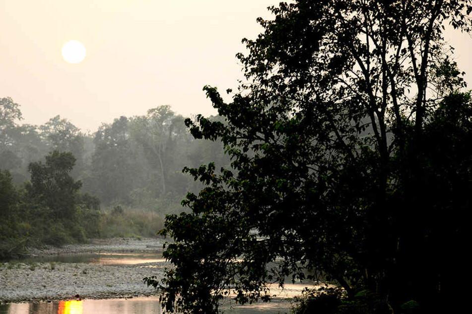 Die Idylle trübt. Im Bardia-Nationalpark kam es zu gleich zwei Todesfällen.