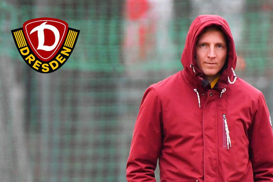 """Dynamo-Kapitän Hartmann im Interview: """"Sechs Punkte sind kein Ruhekissen!"""""""