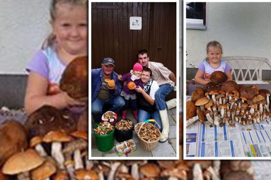 Familie Jähn und ihre sensationelle Pilzsammlung.
