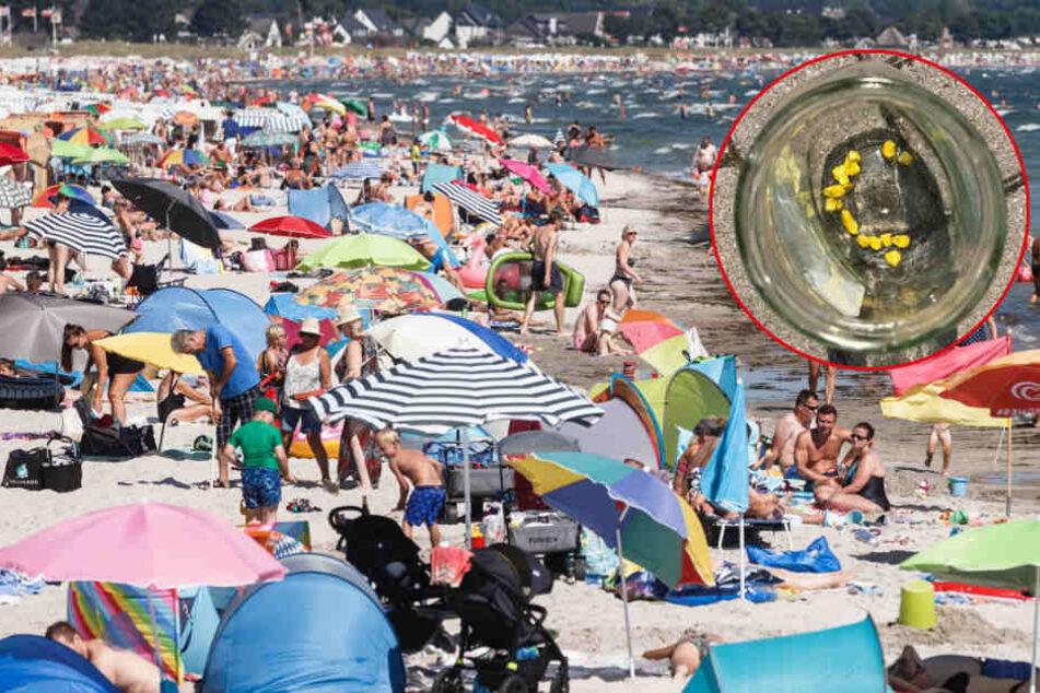 Nächste Bedrohung an der Ostsee! Feuerwehr warnt vor lebensgefährlichem Stoff