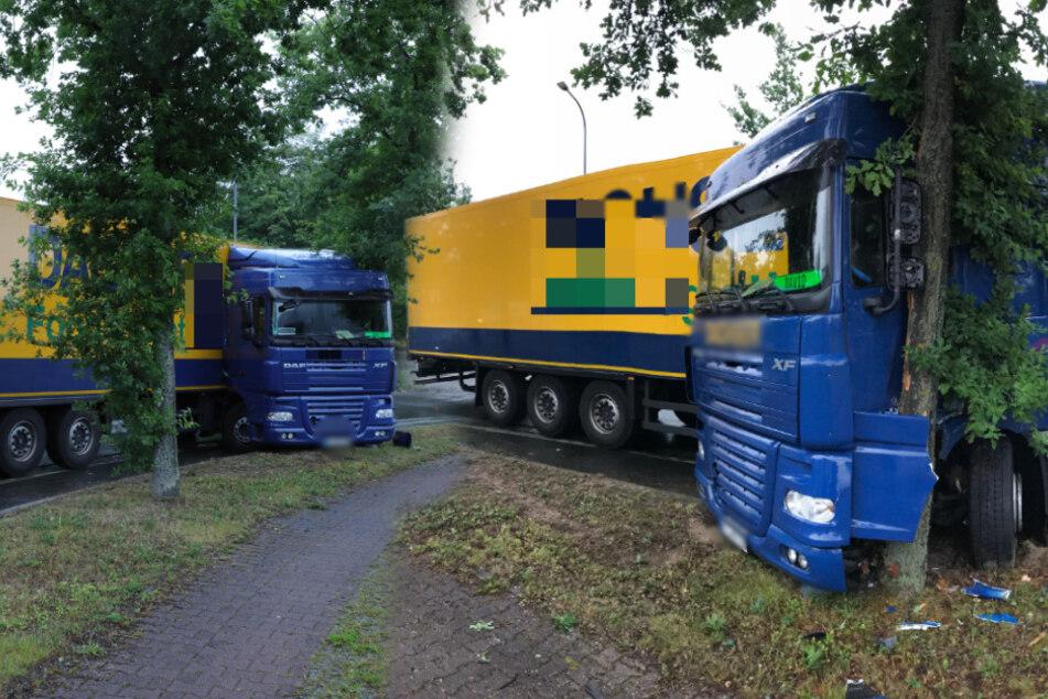 Lkw-Fahrer hört lauten Knall, schleudert über Fahrbahn und kracht in Baum