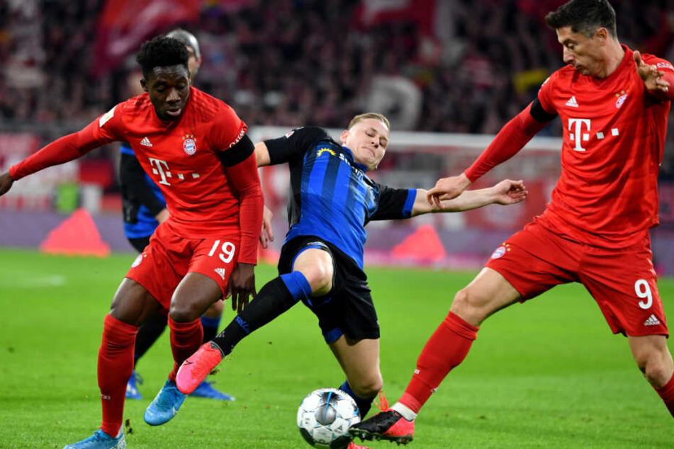 Alphonso Davies (l) und Robert Lewandowski (r) vom FC Bayern München Bayern München und Kai Pröger (M) von Paderborn kämpfen um den Ball.