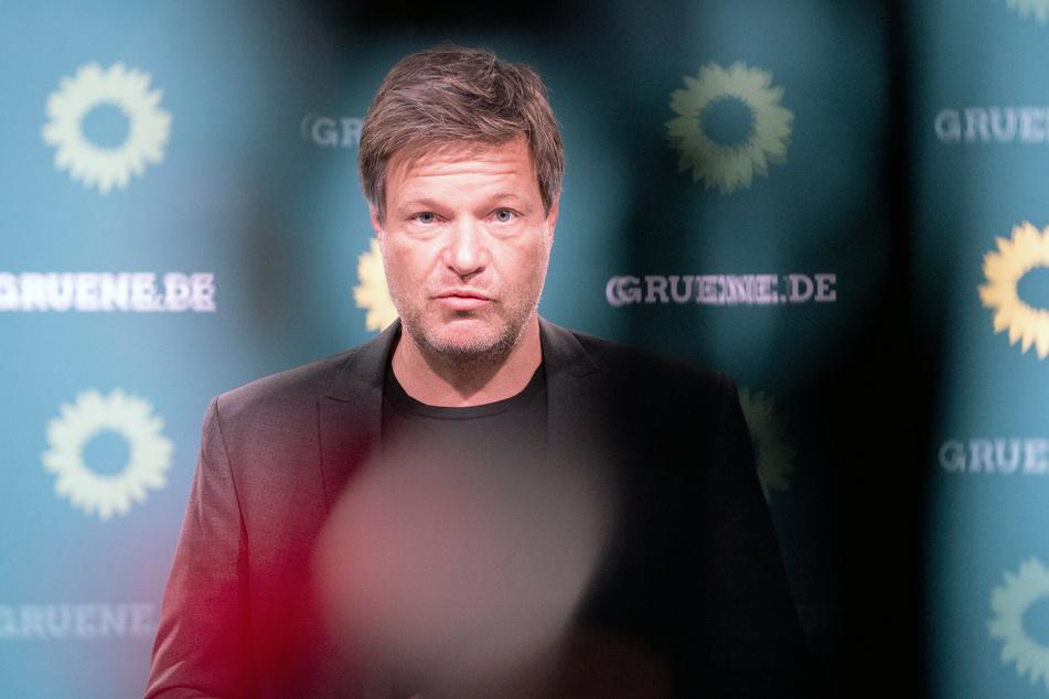 Der Co-Vorsitzende der Grünen, Robert Habeck (51).