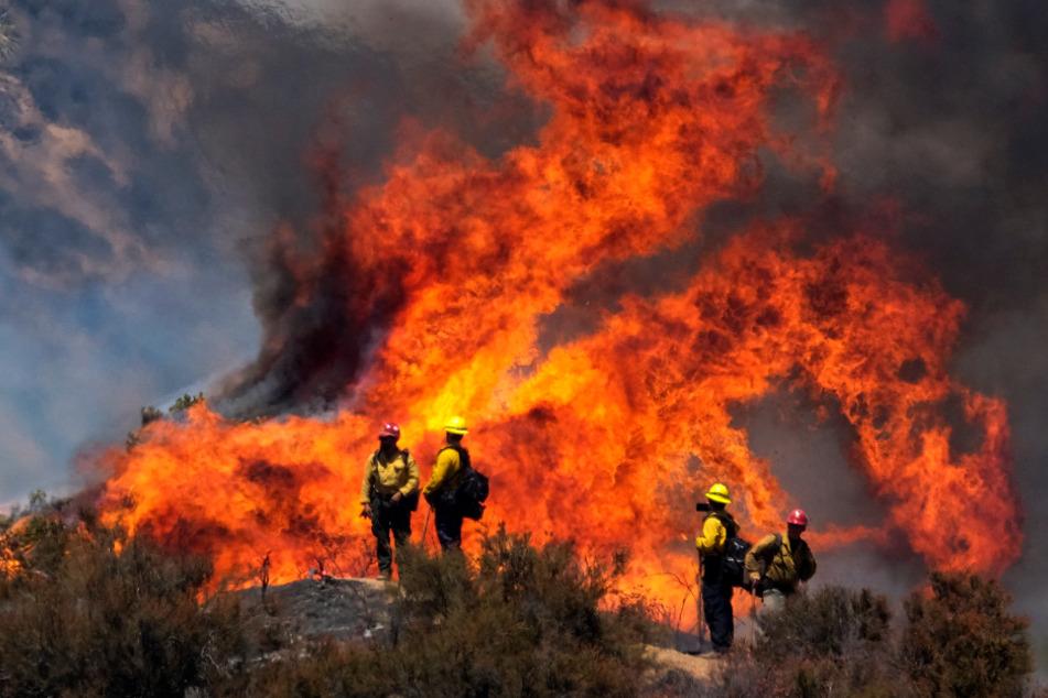 Extremer Waldbrand in Südkalifornien: Ist ein Auto schuld?
