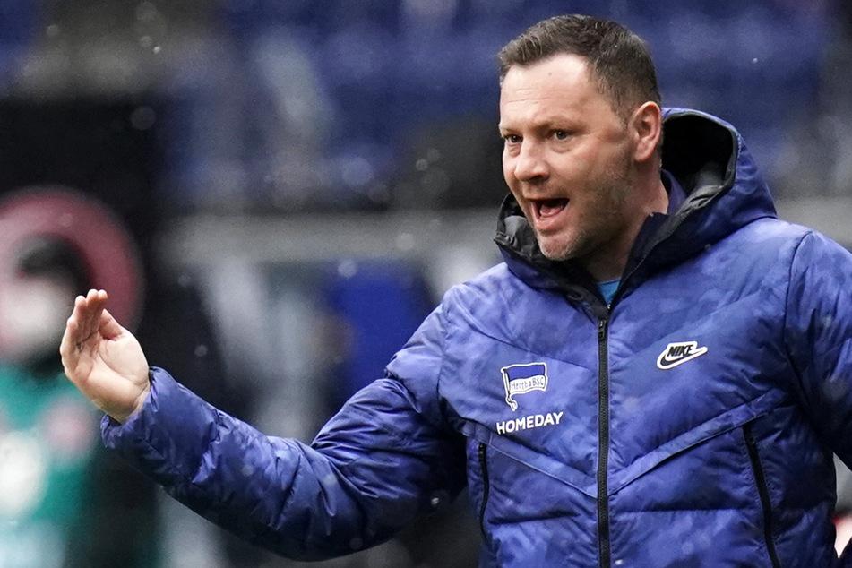 Hertha-Trainer Pal Dardai soll die Berliner vor dem Abstieg bewahren.