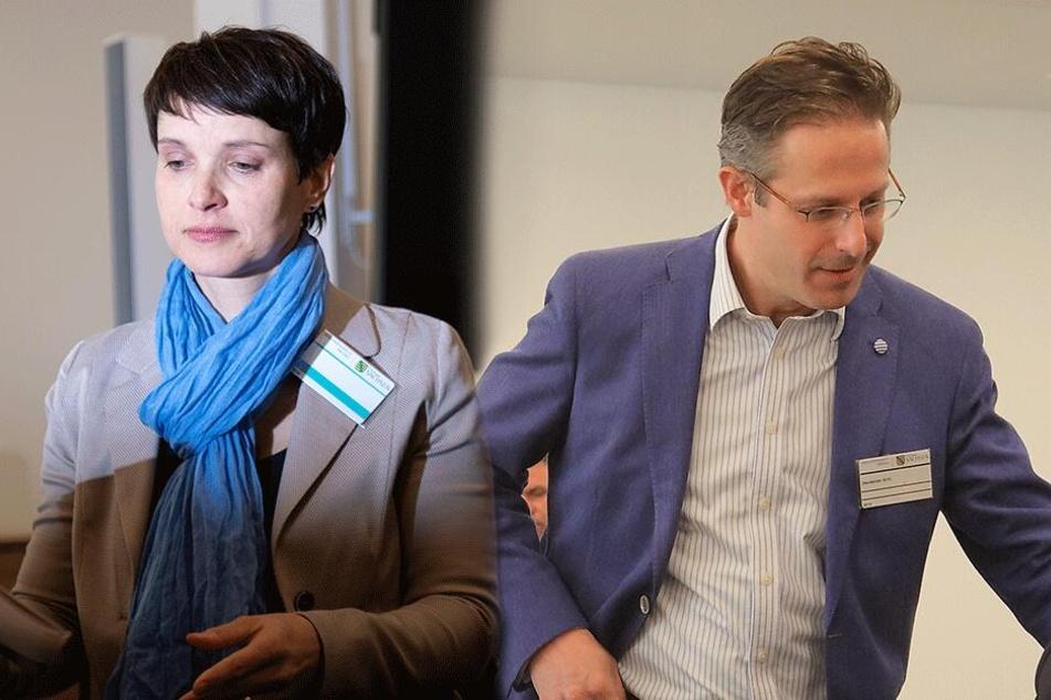 Prozess gegen Ex-AfD-Chefin Petry: Ehemann will Abgeordnete anzeigen