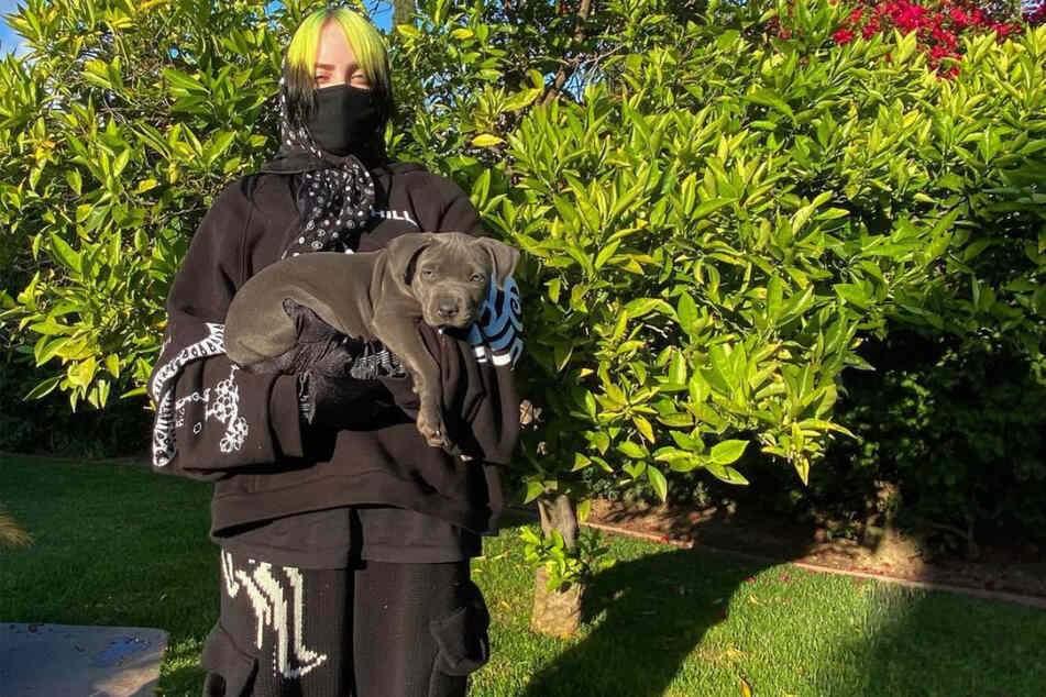 Billie Eilish (19) dresses nearly exclusively in baggy clothes.