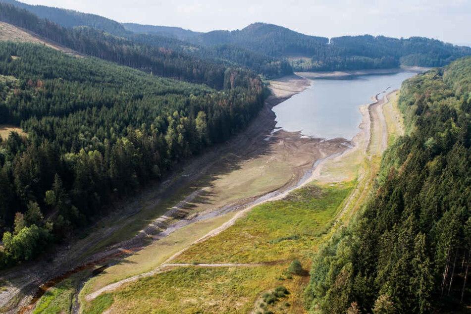 Kaum Regen, hoher Verbrauch: Das Trinkwasser aus dem Harz, auf das Millionen Menschen angewiesen sind, könnte knapp werden.