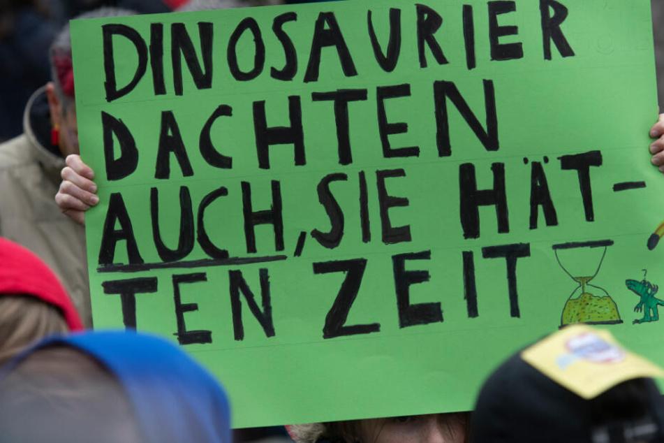 """Ein Plakat bei einer """"Fridays for Future""""-Demonstration in Berlin macht auf die Notwendigkeit des raschen Handelns aufmerksam."""