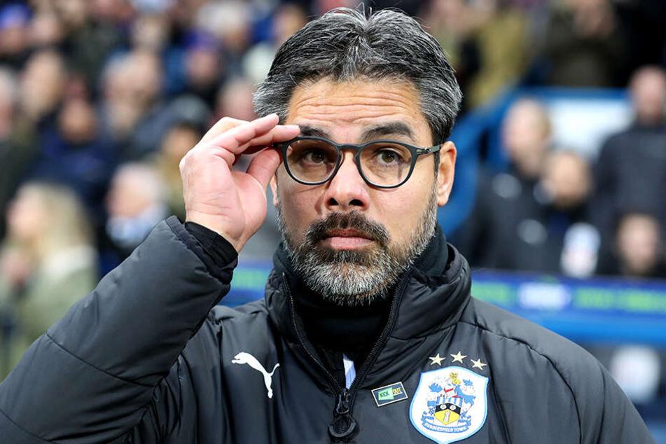 David Wagner wird neuer Trainer des FC Schalke 04.