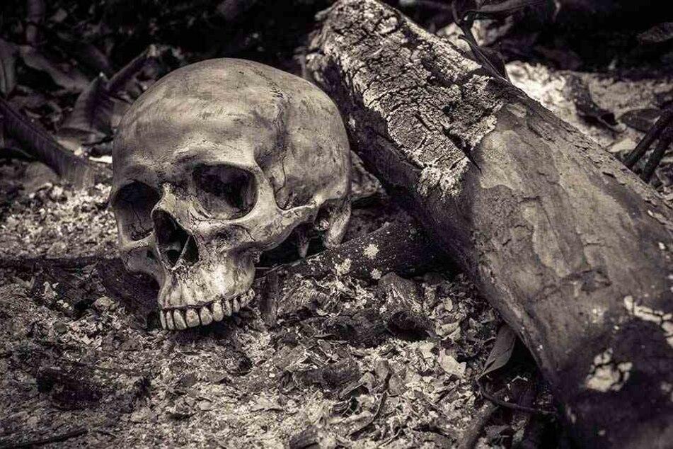 Die Leiche hat wohl seit fast zwei Jahren an dem Baum gelegen und wurde dort skelettiert (Symbolbild).