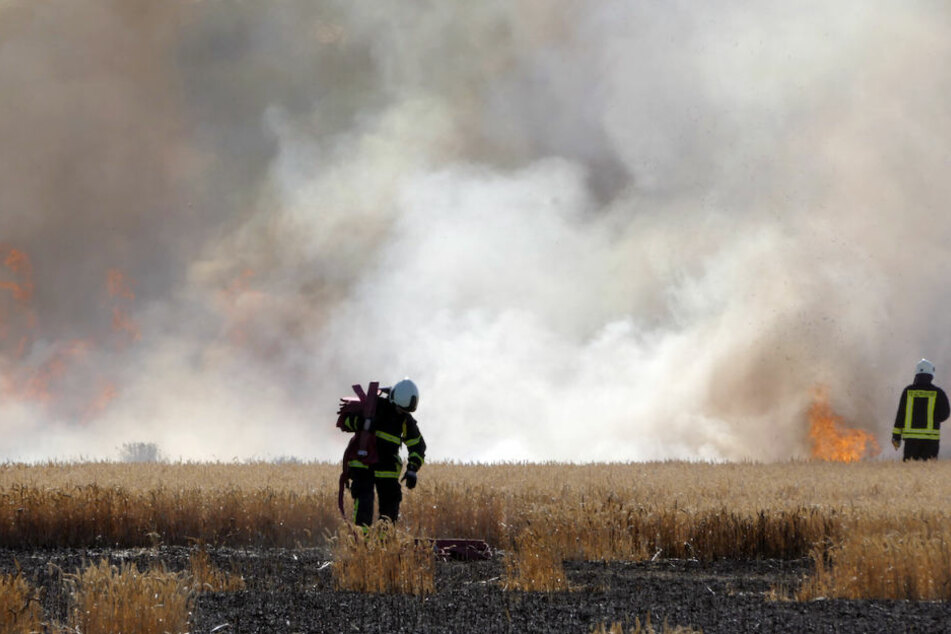 Es nimmt kein Ende: Flammen-Inferno hält Feuerwehr weiter in Atem