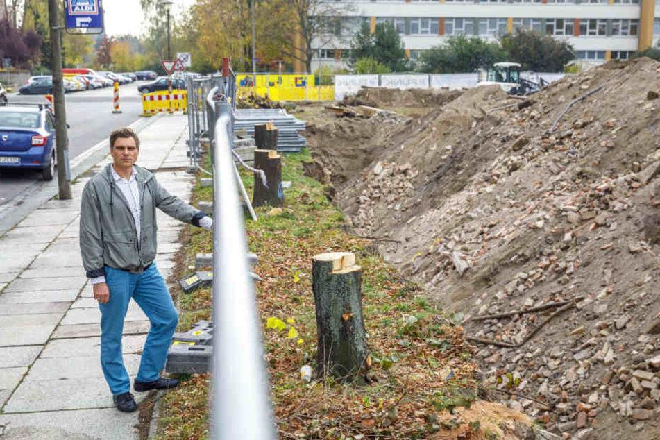 Grüne-Stadtrat Thomas Löser (47) ärgert sich über die Fällungen.