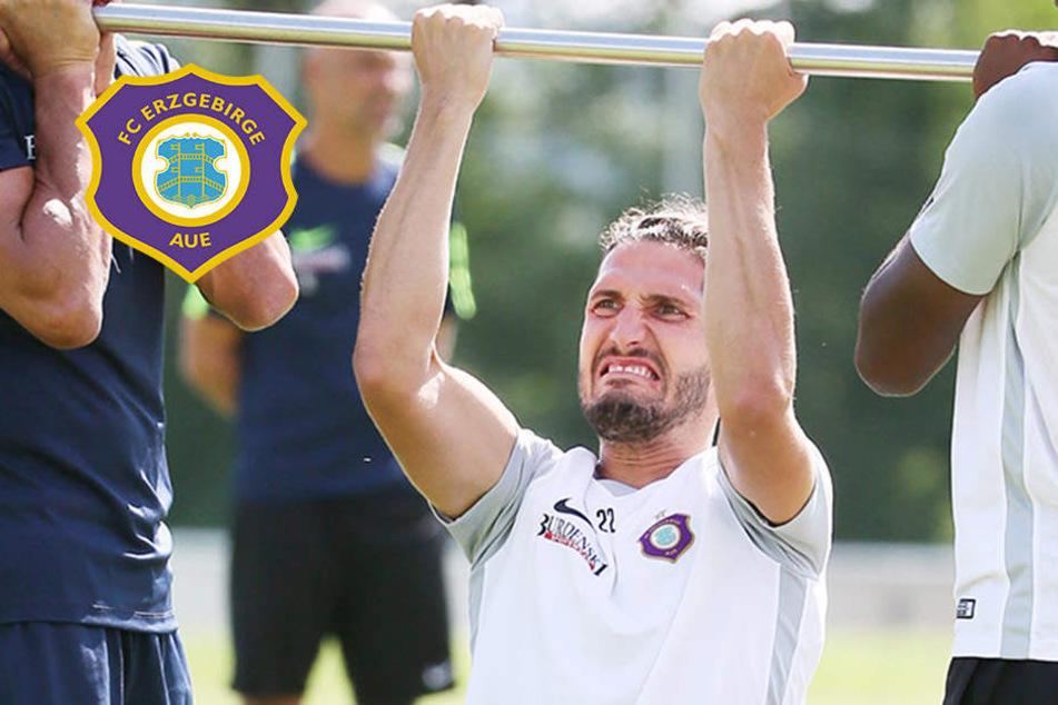 Wieder da! Kaufmann will zurück ins Team des FC Erzgebirge