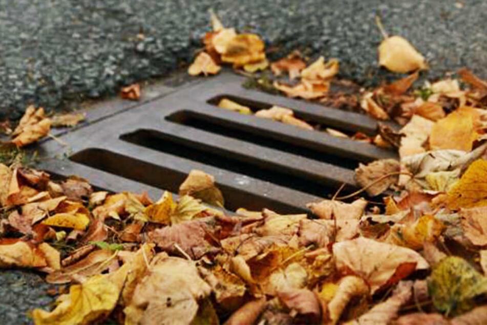 Vermutlich kommen die unangenehmen Gerüche aus der Kanalisation, die wegen der Trockenheit zu wenig durchgespült wurde.