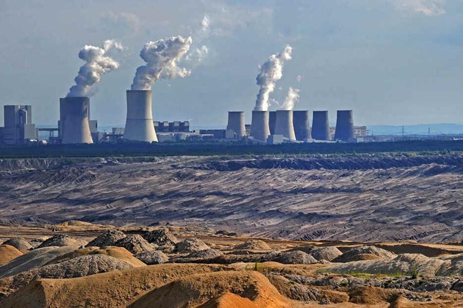 Braunkohlekraftwerke wie hier in Boxberg gelten als besonders umweltbelastend. Die EU will jetzt vor allem den Ausstoß von Stickoxiden und hochgiftigem Quecksilber weiter begrenzen.